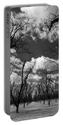 Pecan Trees Portable Battery Charger