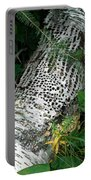 Pecked Birch Portable Battery Charger