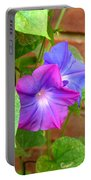 Peek-a-boo Morning Glories Portable Battery Charger