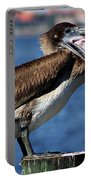 Pelican I Portable Battery Charger