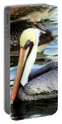 Pelican Pete Portable Battery Charger by Karen Wiles