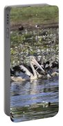 Pelicans At Knuckey Lagoon Portable Battery Charger