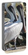 Pelicans Of Keaton Beach Canal Portable Battery Charger