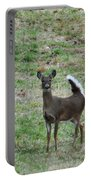 Pennsylvania White Tail Deer Portable Battery Charger