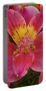 Peruvian Lilies Portable Battery Charger