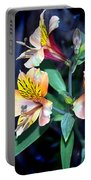 Peruvian Lily In My Garden Portable Battery Charger