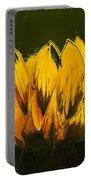 Petales De Soleil - A41b Portable Battery Charger