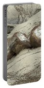 Petrified Forest 1 Portable Battery Charger