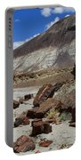 Petrified Forest 2 Portable Battery Charger