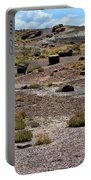 Petrified Forest National Park 2 Portable Battery Charger
