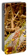 Pheasant Portable Battery Charger