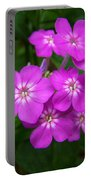 Phlox In Bloom Portable Battery Charger