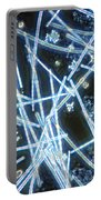 Phytoplankton Portable Battery Charger