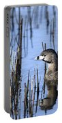 Pied-billed Grebe, Montreal Botanical Portable Battery Charger