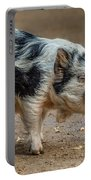 Pig With An Attitude Portable Battery Charger