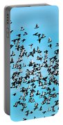 Pigeon Flight Portable Battery Charger