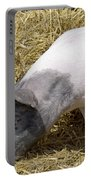 Piggy Piggy In The Straw Portable Battery Charger
