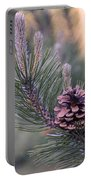 Pine Cone At Sundown Portable Battery Charger