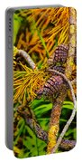 Pine Cones And Needles On A Branch Portable Battery Charger