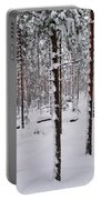 Pine Forest In January Portable Battery Charger