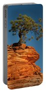 Pine On Rock Portable Battery Charger