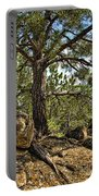 Pine Tree And Rocks Portable Battery Charger