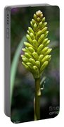 Pineapple Popsicle Portable Battery Charger