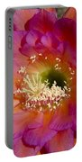 Pink And Orange Cactus Flower Portable Battery Charger