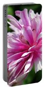 Pink Anemone From The St Brigid Mix Portable Battery Charger