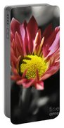 Pink Chrysanthemum Portable Battery Charger