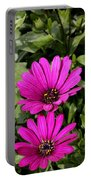 Pink Daisy's Portable Battery Charger