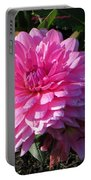 Pink Dew Portable Battery Charger