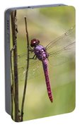 Pink Dragonfly With Sparkly Wings Portable Battery Charger
