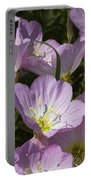 Pink Evening Primrose Wildflowers Portable Battery Charger