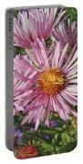 Pink New York Aster- Symphyotrichum Novi-belgii Portable Battery Charger