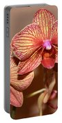 Pink Orchid2 Portable Battery Charger