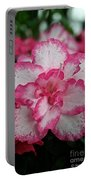Pink Party Portable Battery Charger