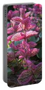 Pink Periwinkle Portable Battery Charger