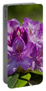 Pink Petals On The Trail Portable Battery Charger