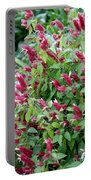 Pink Shrimp Plant Portable Battery Charger