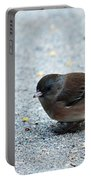 Pink-sided Junco Portable Battery Charger
