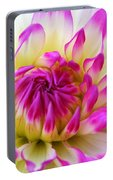 Pink Tinged Dahlia Portable Battery Charger