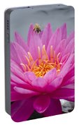 Pink Water Lily Rose Arey With Bee Portable Battery Charger