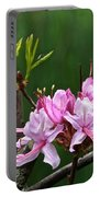 Pinxterbloom Azalea  Portable Battery Charger
