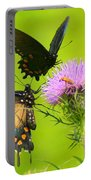 Pipevine Swallowtails In Tandem Portable Battery Charger