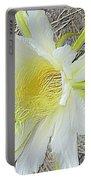 Pitaya Flower Portable Battery Charger