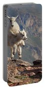Playtime On The Brink Portable Battery Charger