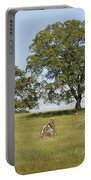 Pleasant Hillside Portable Battery Charger