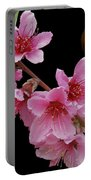 Plum Beautiful Portable Battery Charger