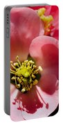 Plum Tree Portable Battery Charger